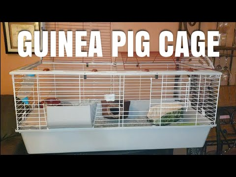 LIVING WORLD CAGE UNBOXING AND SETUP FOR GUINEA PIGS AND SMALL PETS