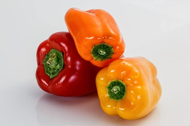 What bell peppers can guinea pigs eat?