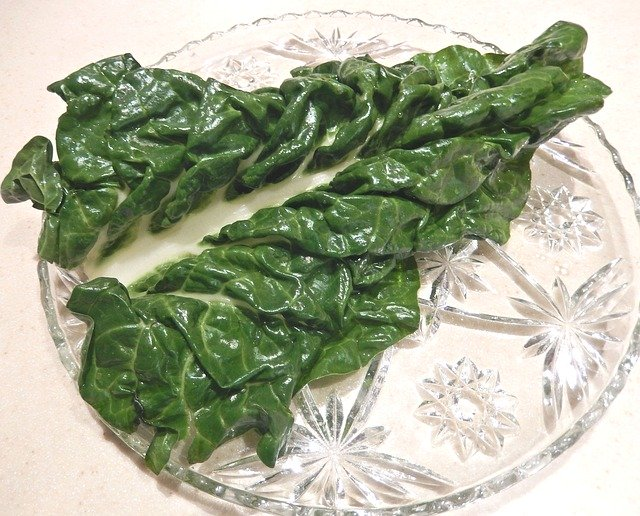 Can guinea pigs eat cooked swiss chard?