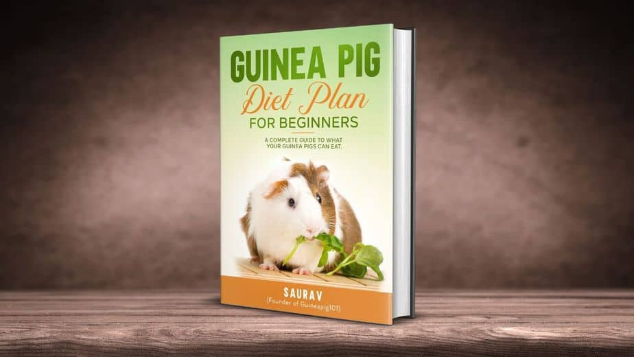 Guinea pig diet for beginners book