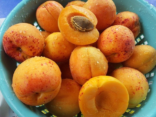 Are apricots safe for guinea pigs? Hazards?