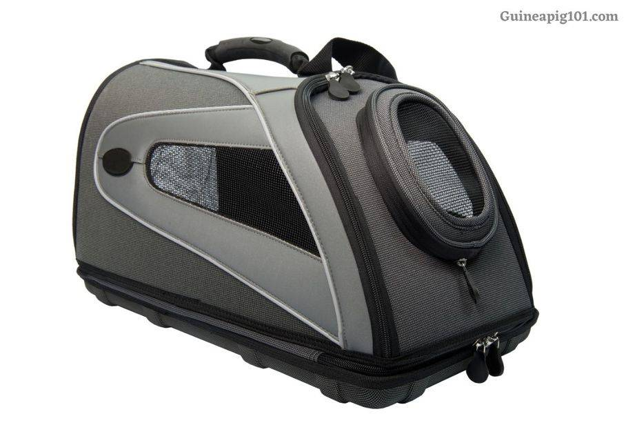 Best Airline-Approved Guinea Pigs Carriers