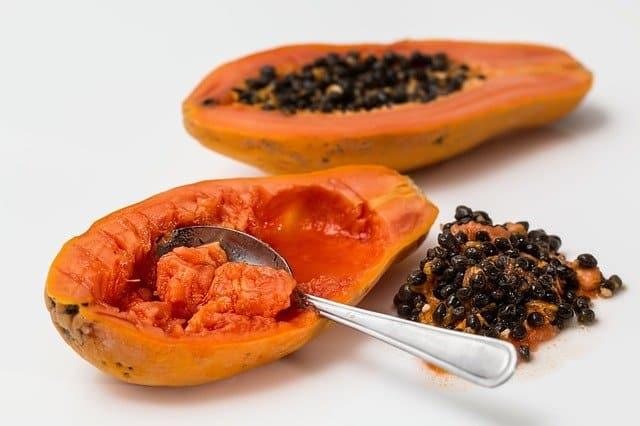 Can guinea pigs eat papaya seeds?