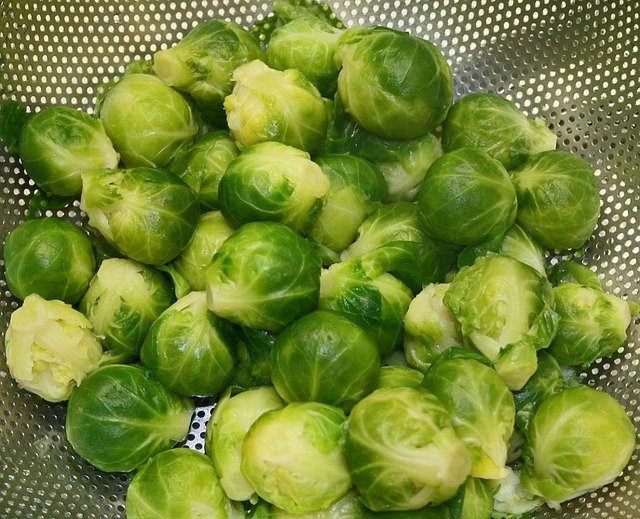 How to feed guinea pigs Brussel sprouts?