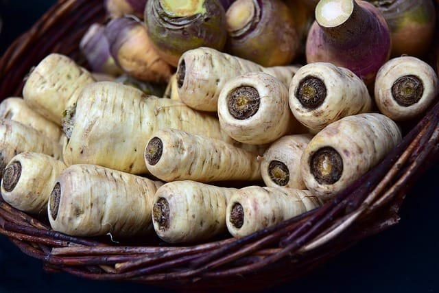 Are parsnips good for guinea pigs?