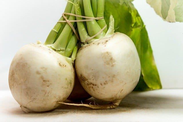 Can guinea pigs eat turnip greens?