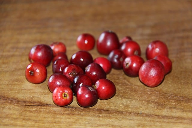 How many cranberries can guinea pigs eat at a time?