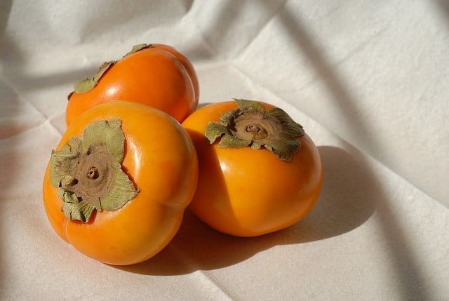 Persimmon health benefits to guinea pigs?