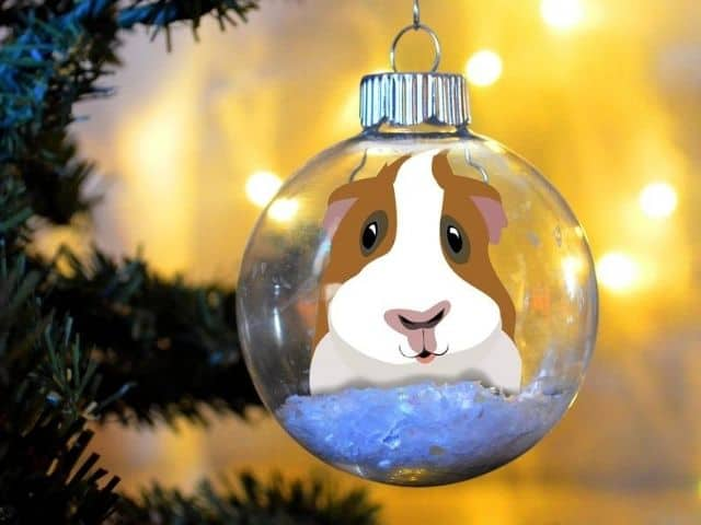 ESTY Guinea Pig Christmas Ornament personalized floated paper memorial glass bulb pet gift
