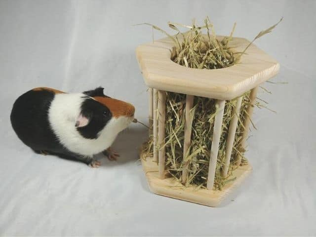 esty Wooden farm-style hay rack For Guinea pigs